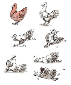 Chicken Tests